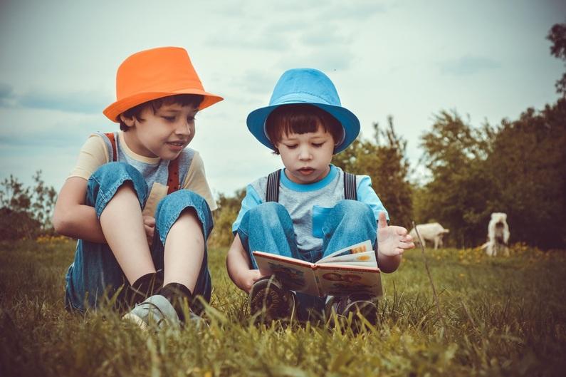 online Nederlandse les in het buitenland losse lessen