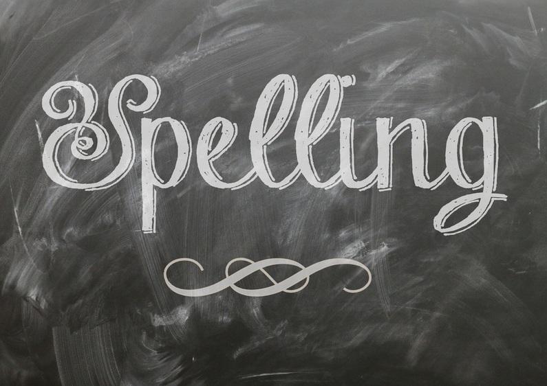 Nederlandse les in het buitenland online