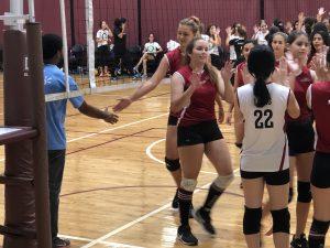 handshake volleybal