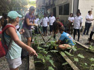 Lokale jonge moeders helpen leren planten